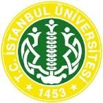 İstanbul Üniversitesi BBY Bölümü